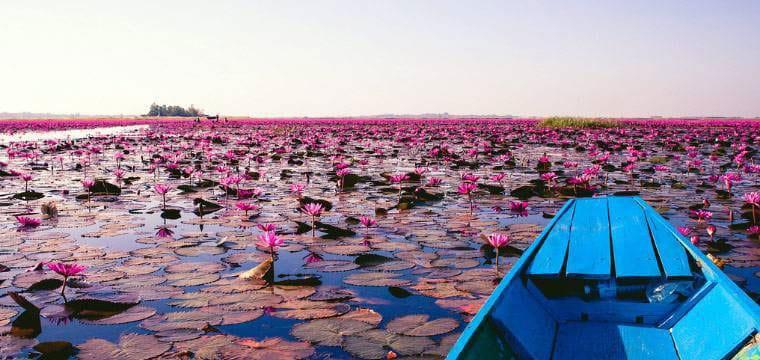 טיול יום פרטי לאגם הלוטוסים בנג בואה